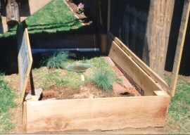 Partially in-ground box turtle enclosure 1